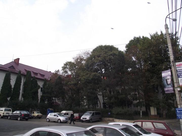 109Actualul sediu al Bibliotecii Bucovinei, aşa cum ar trebui să fie conservat pentru eternitate, deşi se vede deja cât rău îi pricinuieşte clădirea Parchetului, care fura perspectiva...Luminişul potenţează romantismul Bibliotecii...