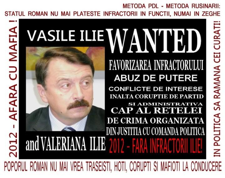 Vasile Ilie - Wanted - Afara cu hotii, traseistii, coruptii, mafiotii si infractorii de la conducere - Metoda rusinarii MIC
