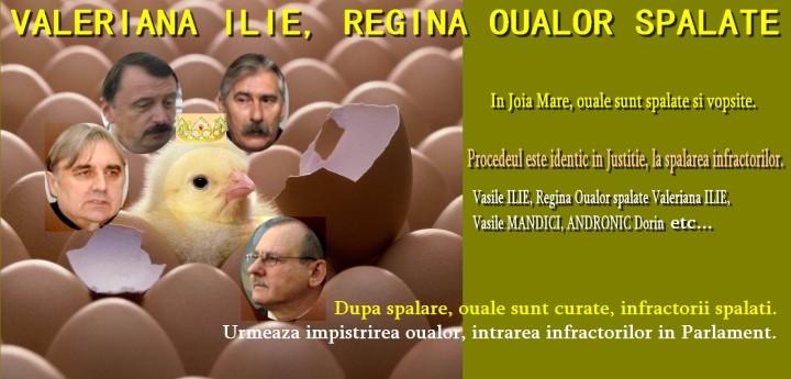valeriana ilie regina oualor spalate